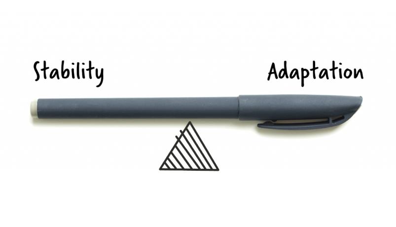 stability-adaptation-balance