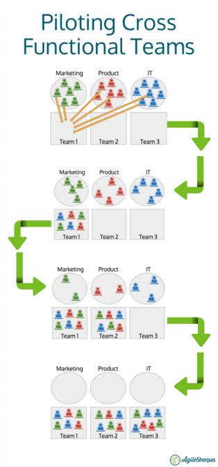 piloting cross functional agile teams