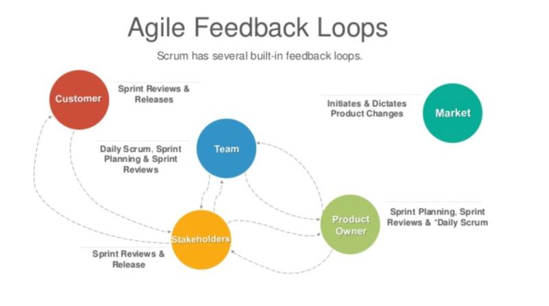 feedback-loops
