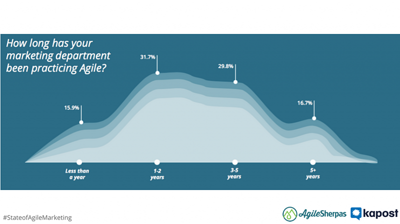 agile marketing team age
